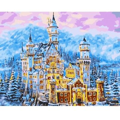 Paint By Number Kit Fairy Tale Castle Mansion Winter DIY Picture 40x50cm Canvas ()
