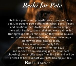Reiki and healing treatment for dogs