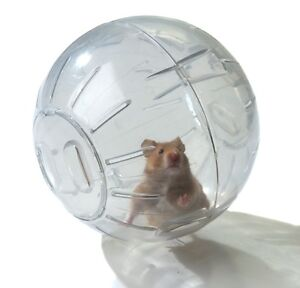 water bottle (rabbit,rat,guinea pig,cochon,hedgehog,hamster BALL