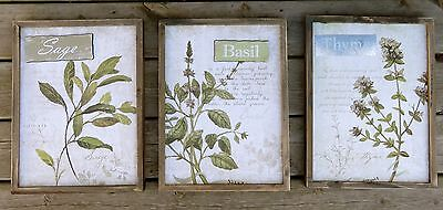 3 WOOD Immure SIGN PLAQUES KITCHEN DECOR NEW HERBS BASIL SAGE THYME ORGANIC HERBAL