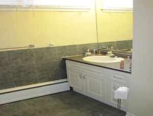 Open Concept 3 Bedroom Near Dal Dentistry! All utilities inc!