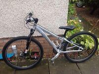 Specialized Rockhopper Mountain Bike 13inch frame, 26 inch wheels