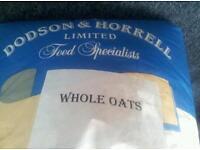Whole oats horse feed 20 kg