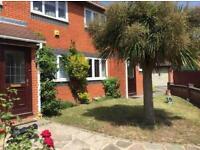 Cheap lawn mowing & garden tidy up Redbridge/ Wanstead/ Ilford/ seven kings/ barking+