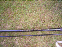Leger fishing rod