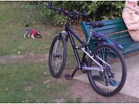 LADIES mountain bicycle, small frame 14""