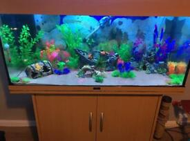 Juwel Rio 180L Fish tank & Stand aquarium