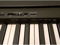 Yamaha Digital Piano P-45 New with stand and pedal for sale