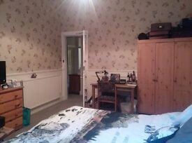 Festival let- double room to rent - August