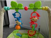 Fisher-Price Infant-to-Toddler Rocker, Baby Bouncer Chair and Rocker