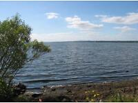 Land wanted on the Lough Shore