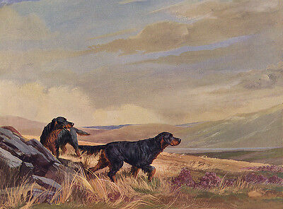 GORDON SETTER CHARMING DOG GREETINGS NOTE CARD TWO BEAUTIFUL DOGS ON THE MOOR