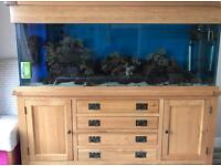 Marine tank with sump