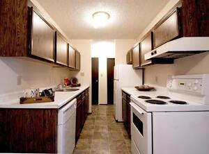 Clean and Spacious 2 Bedroom Available Jan. Call (306) 314-0448