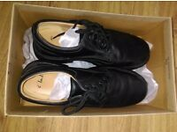 Mens clark shoes