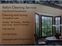 Cleaner / Housekeeper