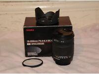 Sigma 18 250 mm DC OS HSM f3.5 - 6.3 Canon DSLR