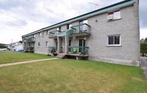4 1/2 logement au 115 Boul. l'Assomption E. à St-Charles