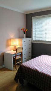 Nice room for professional! Monthly/weekly! Now!