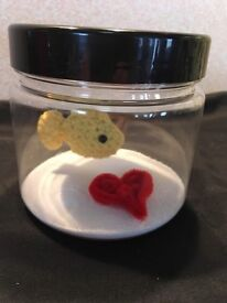 Crochet clothing and crochet fish in tank