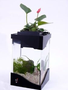 Flower Plant Pot / Fish Tank + LED| Planter / Aquaponics / Aquar
