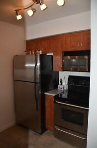 2bedroom Condo,Downtown,Near Subway, available June or July 1