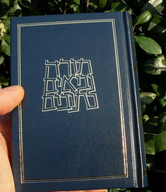 תורה נביאים כתובים מהדורת קורן (חדש) 10