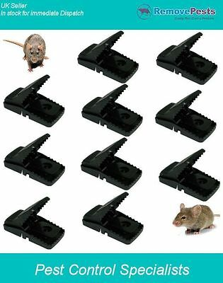 10 T-Rex rat traps, quick humane take Poison free, green solution to rat control