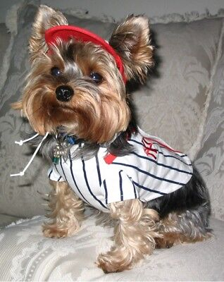 Matching Dog Costumes ( PET DOG NY EMBROIDERED BASEBALL JERSEY WITH MATCHING CAP)