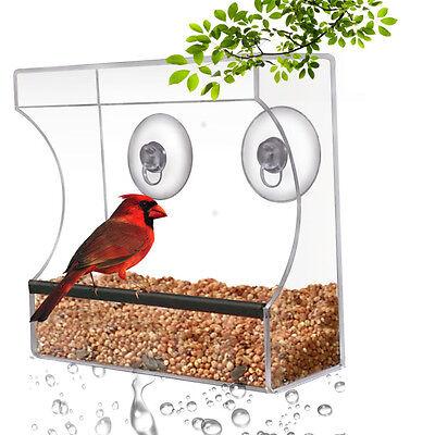 CRYSTAL CLEAR SMALL BIRD FEEDER - Suction Window Feeders Easy Clean Feeding