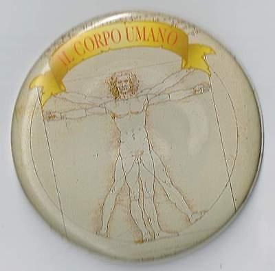 """Il Corpo Umano Refrigerator Magnet Round The Vitruvian Man Leoardo da Vinci 2½"""""""
