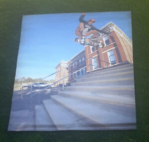 Very large skateboard pic