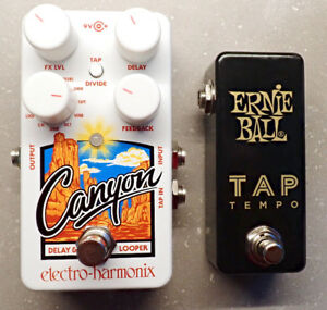 EHX Canyon Delay and Looper Pedal + Ernie Ball Tap Tempo