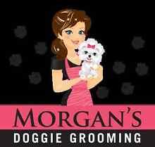 Morgan's Doggie Grooming Bassendean Bassendean Area Preview