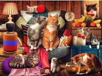 BNIB 1000PC cat jigsaw puzzle