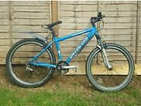 Men's specialised mountain bike