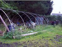 Large 45ft x 20ft polytunnel frame in excellent condition Double and single doors.Anchor plates etc