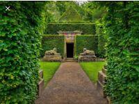 Gardener/landscaper/handyman