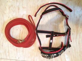 'Cottage Craft' lunge head collar/lunge rope and schooling whip. Co. Tyrone