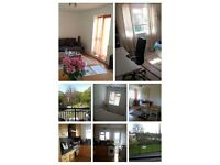 URGENT BEAUTIFULL CHISWICK ZONE 2 W4 Lease to take over no commission direct landlord