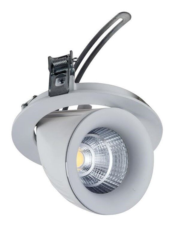 10w Or 20w Led Directional Swivel And Scoop Retail