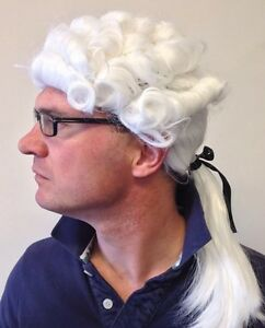 Judge Wig Barrister Court Gentleman Downton Lawyer Fancy Dress Party White Hair