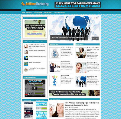 Affiliate Marketing Tips Website Store With New Domain Video Pages