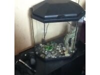 25 litre aquarium fish tank with filter heater and decoration £20