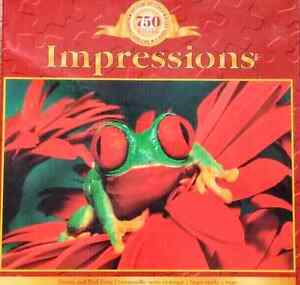 Impressions Puzzle by The Canadian Group