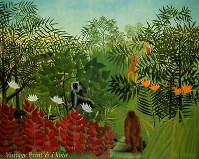 Tropical Forest with Apes and Snake by Henri Rousseau Jungle 8x10 Print -