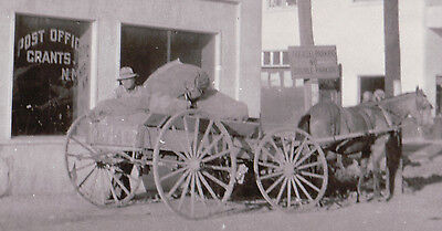 VINTAGE GRANTS NM US MAIL HORSE CART CARRIAGE POST OFFICE CONOCO RT 66  PHOTO ()