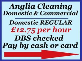 Anglia Cleaning Services } DOMESTIC CLEANING / HOUSE CLEANER / MOVING IN OR OUT CLEANING