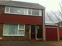 3 bed semi very detached house to rent