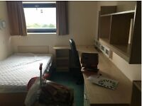 It is a student accommodation Four are girls and one boy.